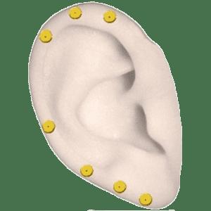 Magneti auricolari dorati, magneti per le orecchie