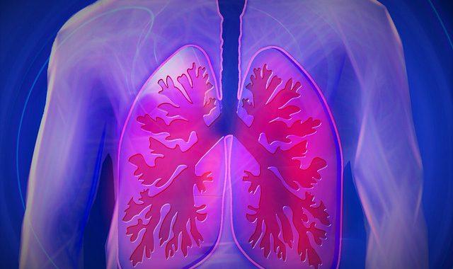bronchite-tosse-febbre-rimedi naturali