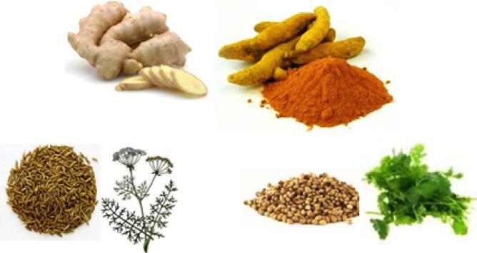 épice,spezia, zenzero, curcuma, carvi, coriandolo per il mal di ventre o di viaggio