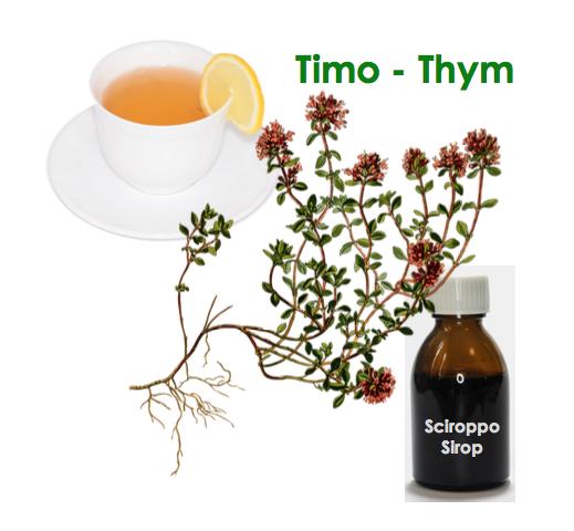 recettes naturelles a base de thym, sirop de thym
